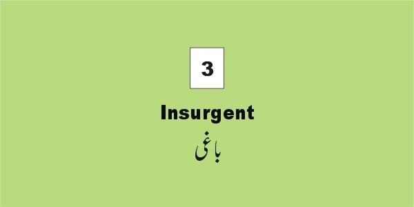 vocabulary_insurgent